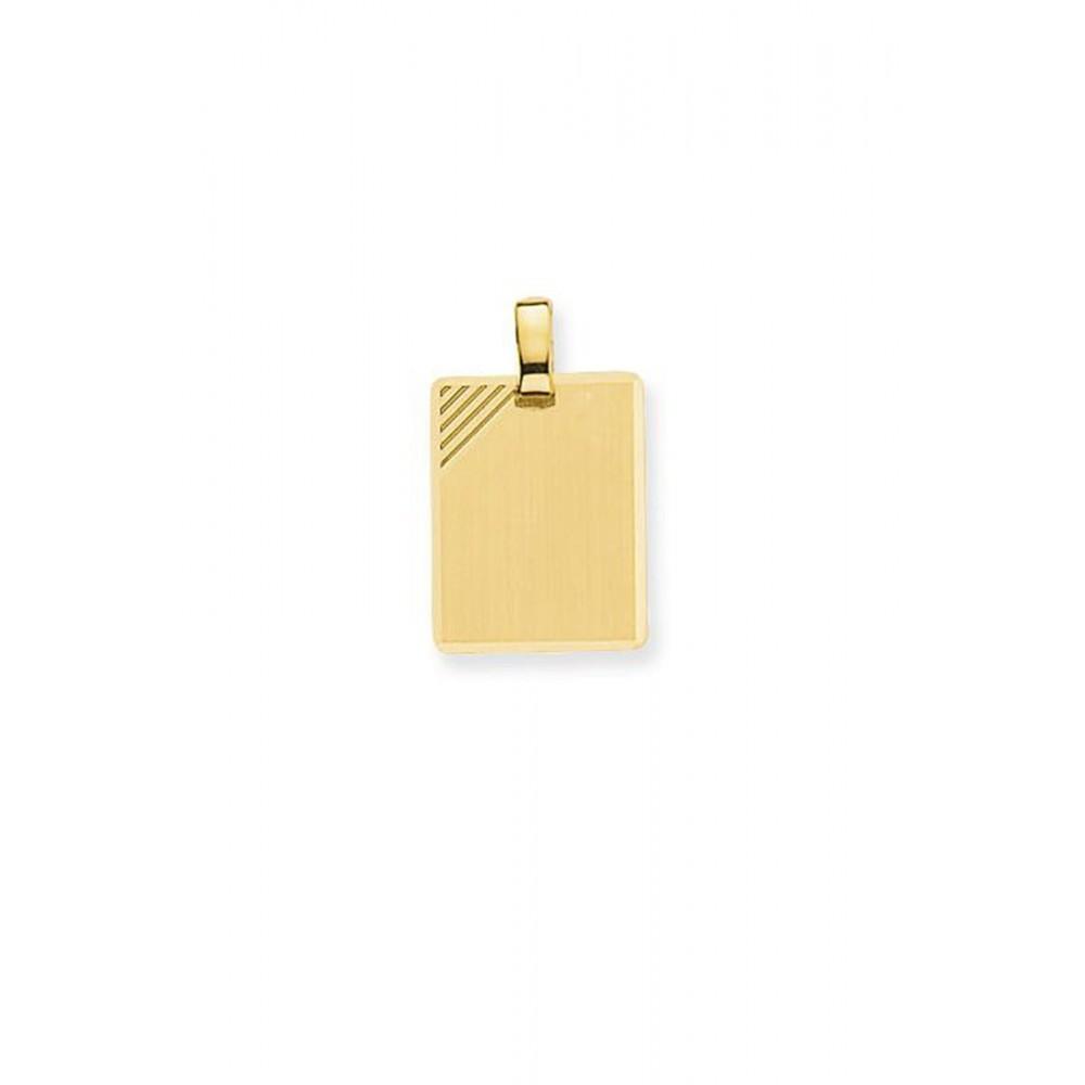 Gouden hanger 100001563